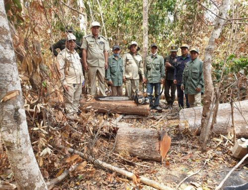 Project Management Unit Facilitated Forest Law Enforcement in the Project Area